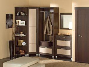 дизайнерская маленькая прихожая комната стиль фото