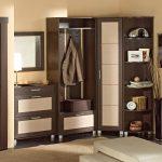 шкаф с зеркалом в проходную комнату из качественного дерева картинка