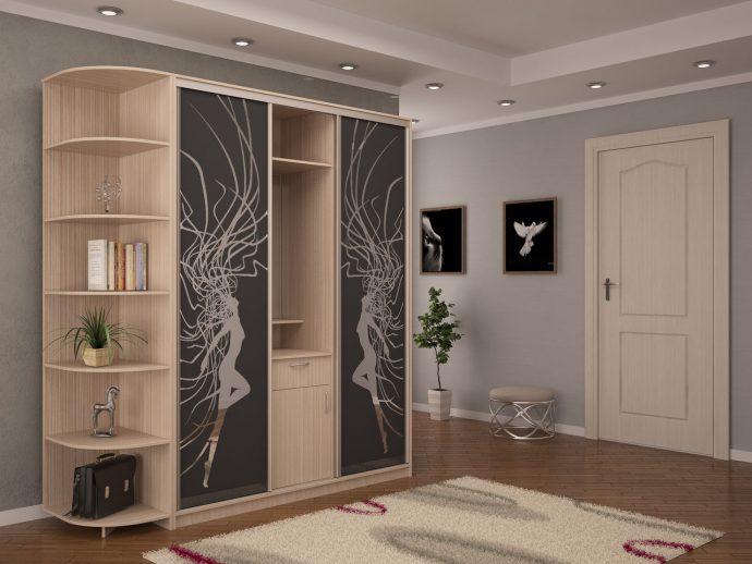 широкий шкаф в прихожую комнату интерьер
