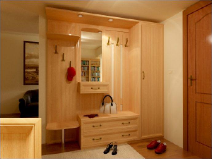 интересный стиль прихожей комнаты с узким коридором