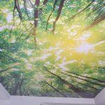 красивый потолок с фотопечатью в игровой комнате картинка