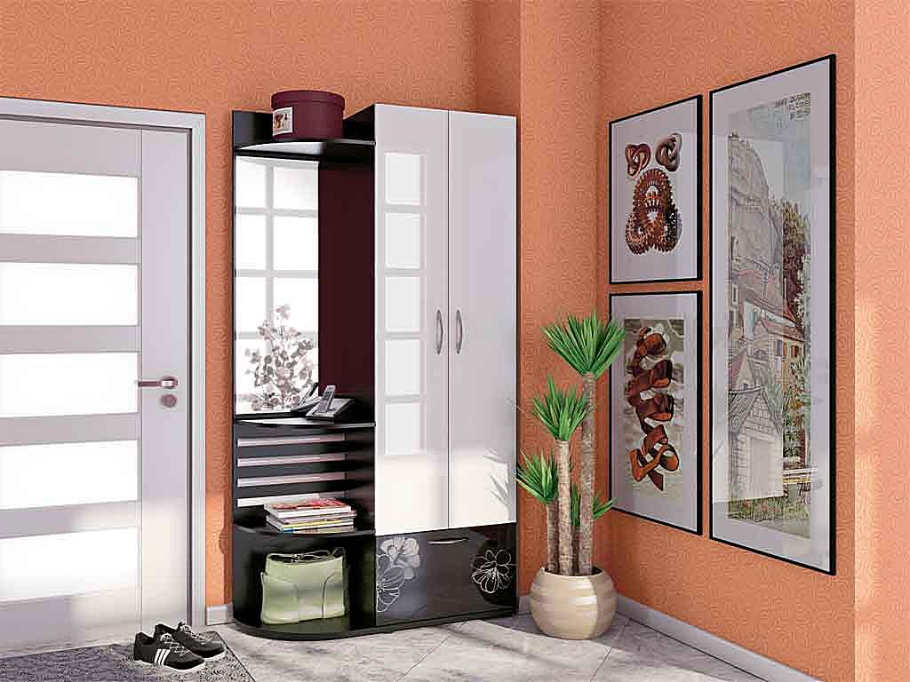 красивый дизайн проходной комнаты новинки