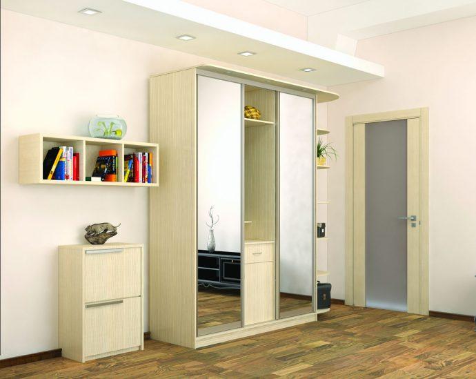 вместительный шкаф в прихожую комнату стиль