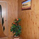 светлая отделка проходной комнаты обои картинки