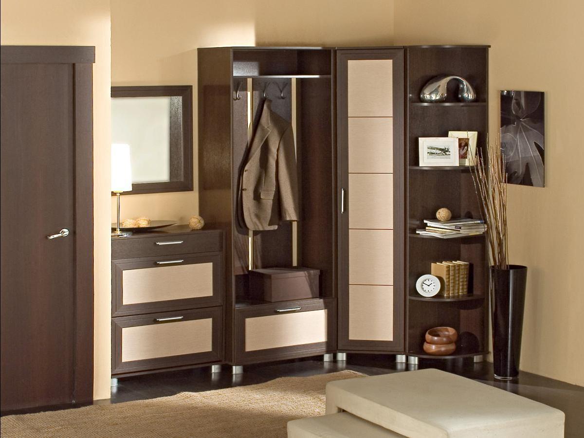 шкаф с зеркалом в проходную комнату из дерева