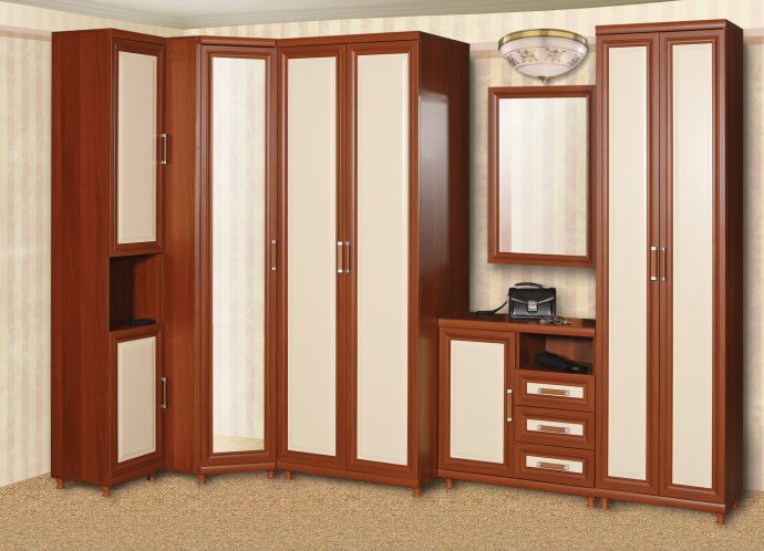 красивый дизайн проходной комнаты с узким коридором