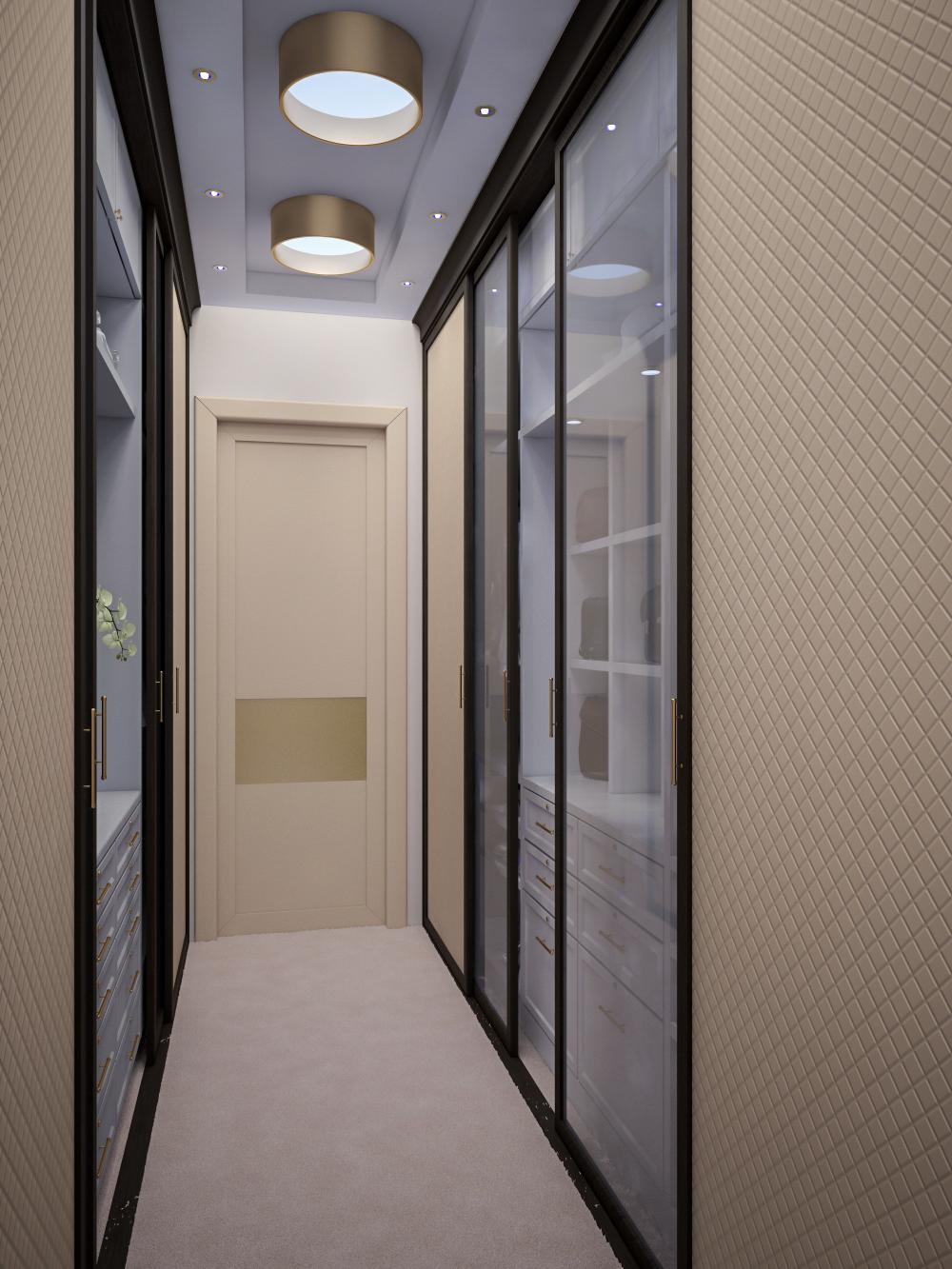 узкий дизайн прихожей комнаты