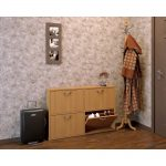 яркая шкафчик для обуви из дерева в прихожую комнату дизайн