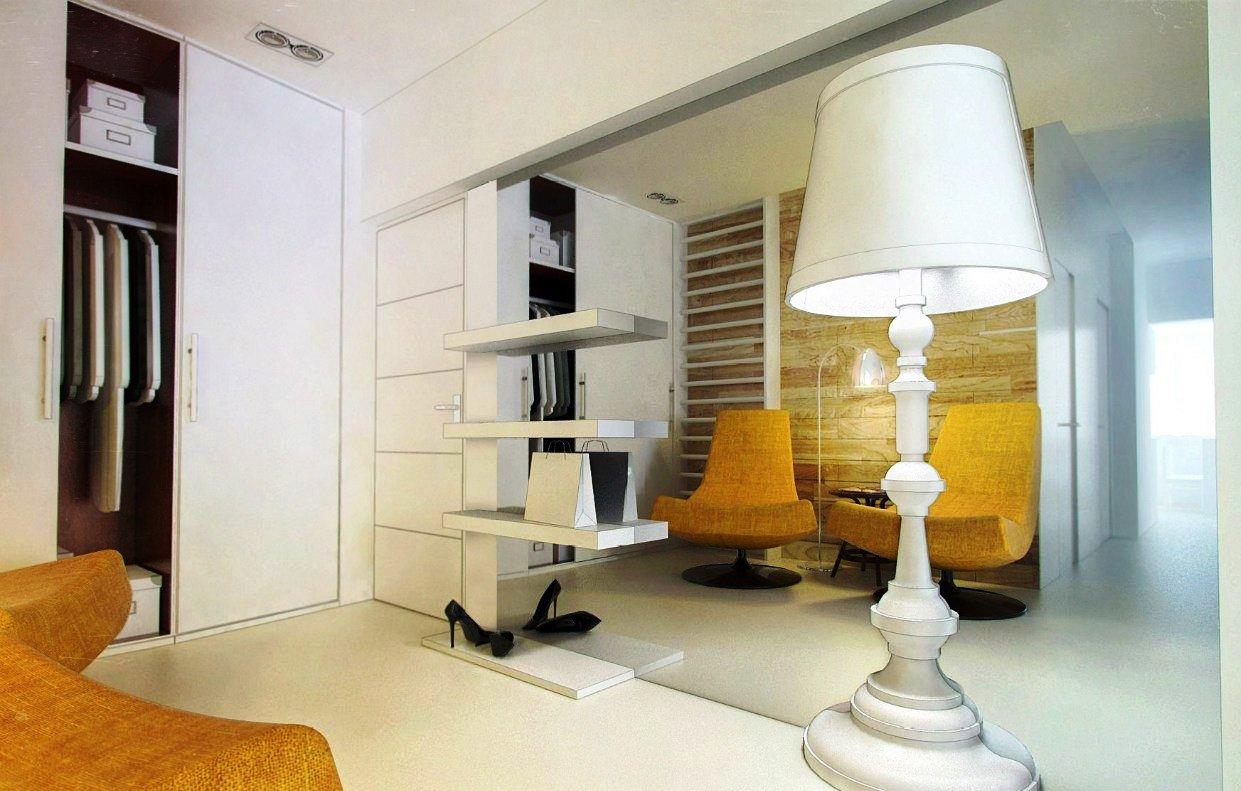 светлый дизайн прихожей комнаты в новом стиле