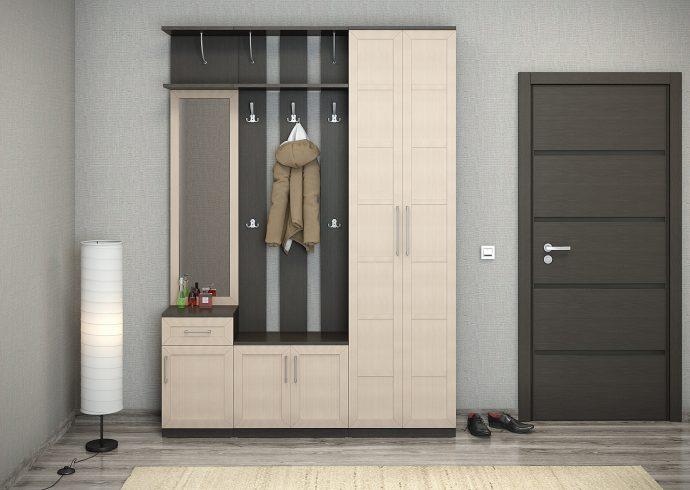 яркий дизайн проходной комнаты с узким коридором